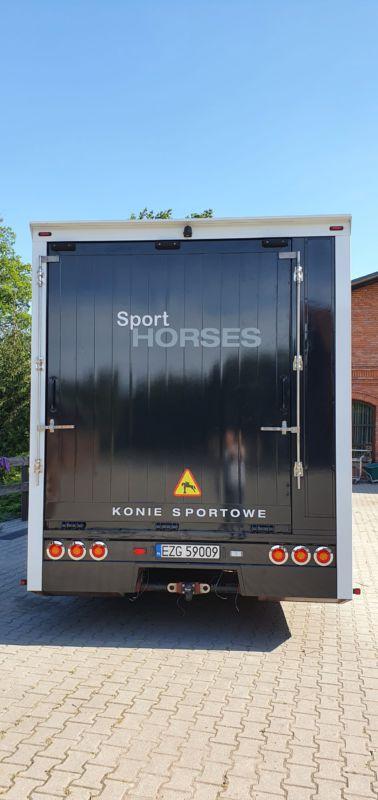 oklejenie samochodu do przewozu koni sportowych